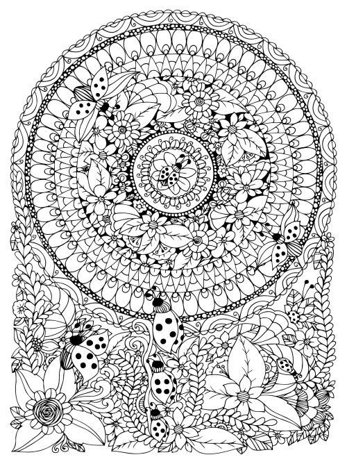 mandala 165 flores e insectos