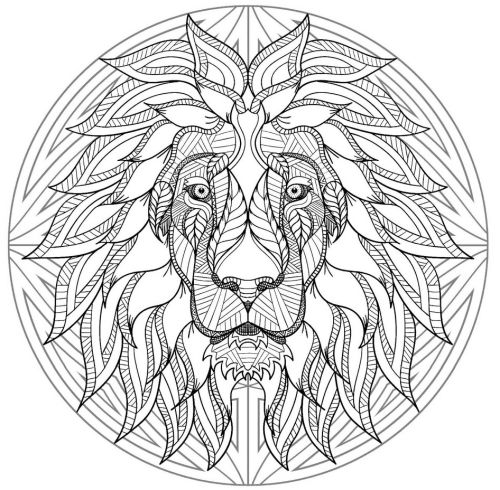 mandala 172 leon