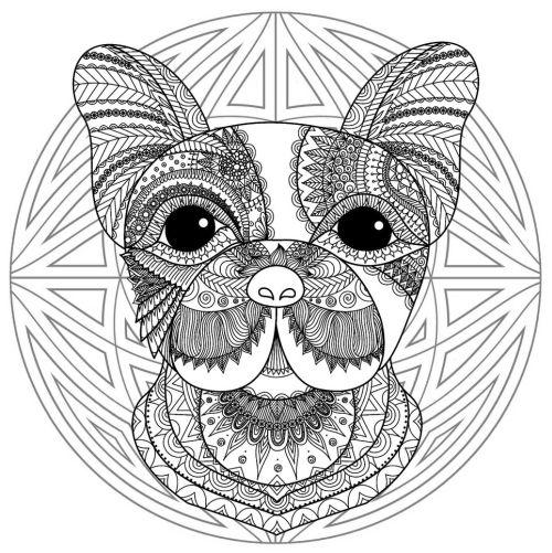 mandala 174 perro