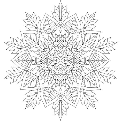 mandala 233 flor de invierno