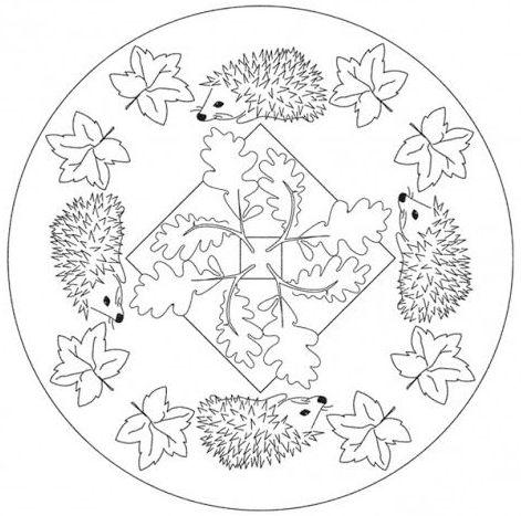 mandala 247 erizos y hojas